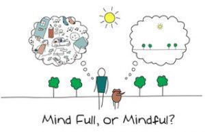 mindfulness cooperativa sociale il punto